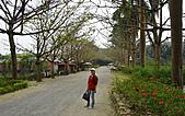 台南 南元休閒農場:台南南元休閒農場-11.jpg