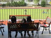 我們的校園:IMG_5245.JPG