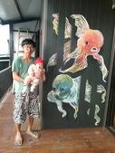 牆壁彩繪(3D立體彩繪,夜光彩繪,住家彩繪,民宿彩繪,etc):19嘉義咖啡館彩繪-魚罐頭咖啡館.jpg