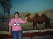 taipei trip go to zoo.:1633065935.jpg