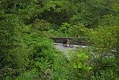 2009北宜、北橫單車挑戰行:2009北宜、北橫單車挑戰 (110).JPG