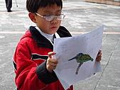 親子鳥類生態解說課程:鳥類生態解說課程 (53).JPG
