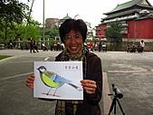 親子鳥類生態解說課程:鳥類生態解說課程 (62).JPG