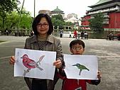 親子鳥類生態解說課程:鳥類生態解說課程 (63).JPG