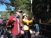 三叉、向陽、嘉明湖登山 :IMG_2098.JPG