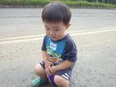 小牛相簿:小牛照 (228).JPG