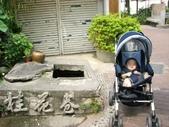 小牛相簿:小牛照 (121).JPG