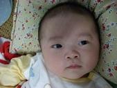 小牛相簿:小牛照 (66).JPG