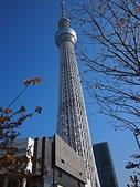 哈日族   日本控:晴空塔 - 複製.jpg