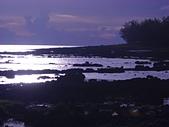 夏日海邊遊:DSCN0395.JPG