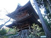 日本橫濱:P1010089.JPG