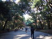 哈日族   日本控:PC083191.JPG