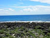 夏日海邊遊:P9092595.JPG
