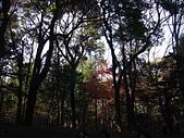 哈日族   日本控:PC083189.JPG