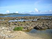 夏日海邊遊:DSCN0359.JPG