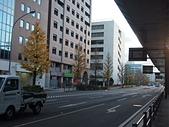 日本橫濱:P1010060.JPG