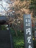 日本橫濱:P1010078.JPG