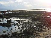 夏日海邊遊:DSCN0398.JPG