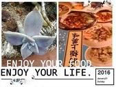 台灣正好玩@@:澎湖之旅拼貼照片B.jpg