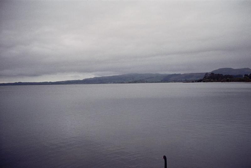紐西蘭:6  -008.jpg