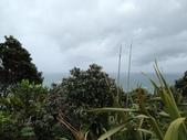 紐西蘭:IMG_0441.JPG