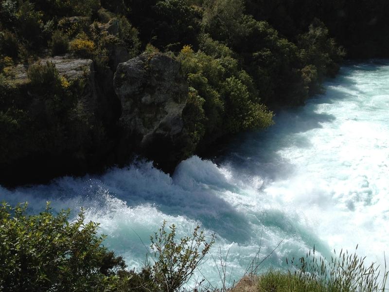 紐西蘭:IMG_0470.JPG