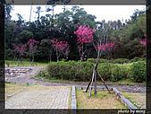 省道台7乙線:IMG_2075.JPG