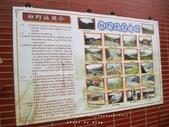 南迴祕境車站-多良 枋山 枋野 中央號誌站 :IMG_3342.JPG