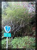 省道台7乙線:IMG_2070.JPG