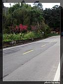 省道台7乙線:IMG_2074.JPG