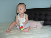 可愛的小外甥-方豪豪:P1130470.JPG