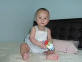 可愛的小外甥-方豪豪:P1130472.JPG