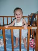 可愛的小外甥-方豪豪:被丟進床裡