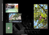 20140105-0110峇里島蜜月閃瞎閃聾電燈泡之旅第五天0109:悠閒的在VILLA拍拍照
