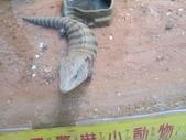 20140902木柵動物園+貓空: