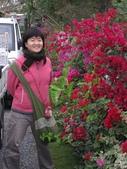 2010過年南部之旅Part II ( Lunar New Year,South of Taiwan):看到阿娟連圍巾都戴上,就知道事情大條了
