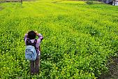 20071229-20080101台東:前往紅葉溫泉的路上,看到傳說中的油菜花田,真是漂亮