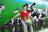 20090209鹽水蜂炮+新營+柳營:往八老爺牧場的乳牛裝置藝術,正好今年是牛年,特別親切
