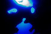 20080425Moalboal - 20080502:Pascador Island:像個鬼臉的洞穴地形,人稱Cathedra