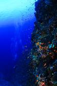 20110603-20110607台東綠島(下)Green Island,Taiwan Part 2 :這般清澈的海水真的是遠勝過眾多國外知名潛點,藍的很夢幻