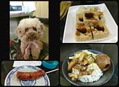 20170506-0507_東北角 Northeast Coast,Taiwan:皇龍的東西還不錯吃~ 左上-像玩具的店狗