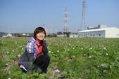 20131130-31苗栗苑裡公館 Miaoli,Taiwan:可惜後方有礙眼的背景><'''