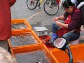 2010過年南部之旅Part II ( Lunar New Year,South of Taiwan):南部賣的蝦子果然都是活跳跳的,真好