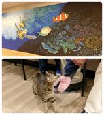 20181229-1230 小琉球(上)  Siaoliouciou,Taiwan:85度C內的海洋風壁畫還不錯,第一次知道貓咪喜歡吃奶油!