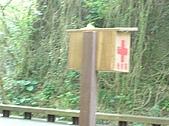 061008小琉球一日遊:山豬溝04