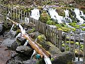 北海道蜜月之旅 3/5:可以拿自己的杯子或保特瓶裝水來喝