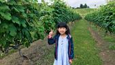 北海道:20190703_012906065_iOS.jpg