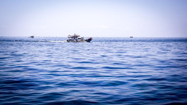 2017宜蘭賞鯨:998A8162.jpg