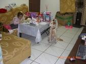 第一名犬--邊境牧羊犬:2013年01月29日CIMG0002.JPG