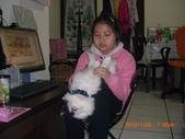 第一名犬--邊境牧羊犬:2013年01月29日CIMG0009.JPG
